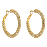 Eve Hoop Earrings - LAST CHANCE