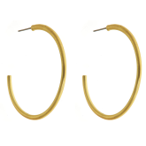 Torrey Hoop Earrings