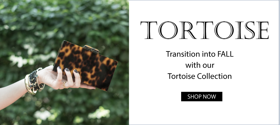 Tortoise Transition
